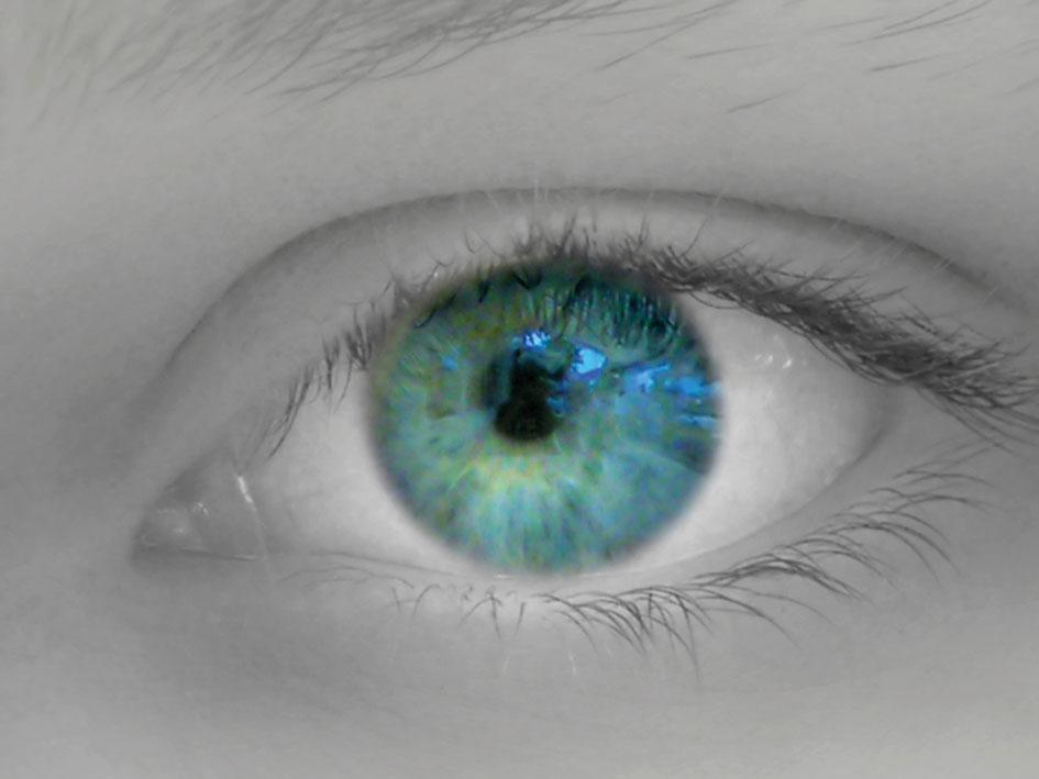 «Die Leuchte des Leibes  ist das Auge»