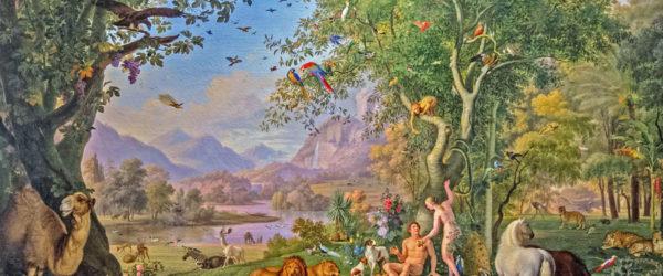 De l'Eden au Paradis céleste: un jardin
